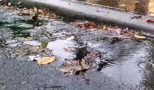 regenwater filteren